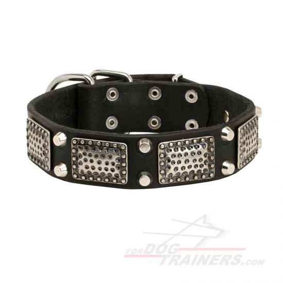 Perfect Quality Leather Dog Collar for Daily Walking and Basic Training