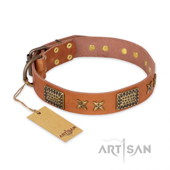 'Cosmic Traveller' FDT Artisan Adorned Leather Dog Collar with Old Bronze-Plated Stars and Plates 1 1/2 inch (40 mm) Wide