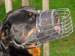Basket wire dog muzzle perfect for Rottie - M90