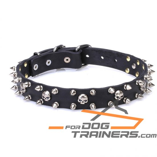 1 inch (25 mm) 'Buccaneer Legacy' Leather Dog Collar with Chrome Plated Spikes and Small Skulls