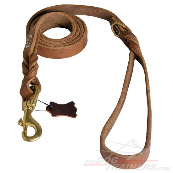 Upgraded Ultimate Professional Leather Dog Leash