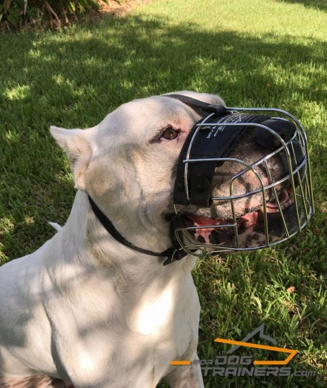 Metal Wire Basket Muzzle with Felt Padded Nose