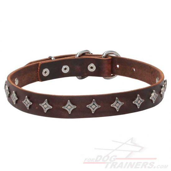 'Interstellar' Narrow Leather Dog Collar with Silver-like Decoration