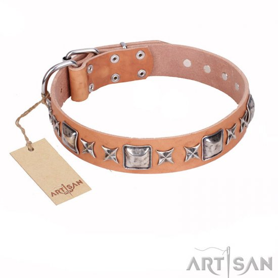 """Silver Chic"" FDT Artisan Tan Leather Dog Collar with Silvery-plated Decorations"