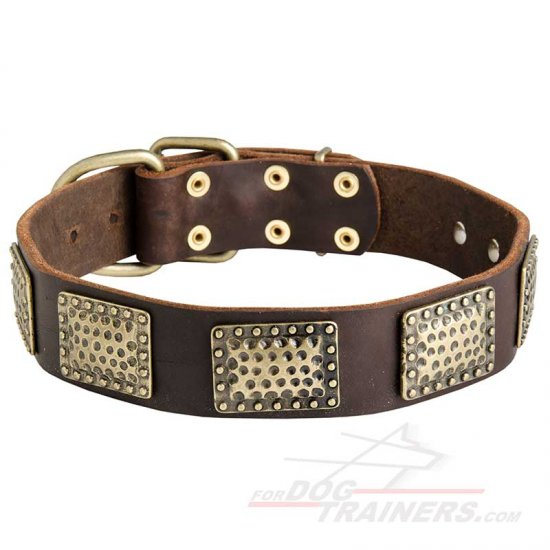 New Gorgeous War Leather Dog Collar with Vintage Look Plates