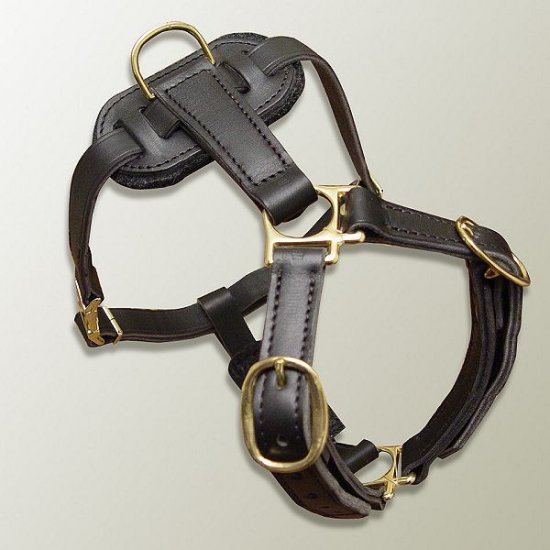 Luxury handcrafted leather dog harness made To Fit Rottweiler H7