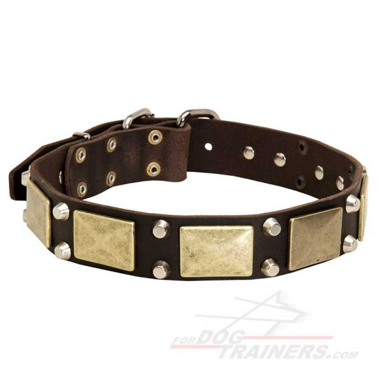 Decorated with Plates and Cones Leather Dog Collar for Everyday Walking