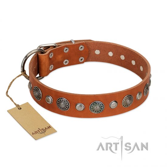 """Natural Beauty"" FDT Artisan Tan Leather Dog Collar with Shining Silver-like Studs"