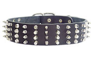 2 inch Leather Dog Collar with STUDS and SPIKES