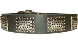 Wide Leather Dog Collar with Massive Plates - Training and Walking Accessory