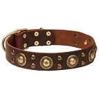 """Space-like"" Leather Dog Collar with Brass Decoration"