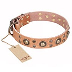 """Sophisticated Glamor"" FDT Artisan Leather Dog Collar with Fancy Old-bronze Plated Decorations - 1 1/2 inch (40 mm) wide"