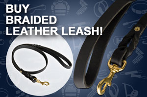 Handcrafted Leather Dog Leash with Elegant Braids