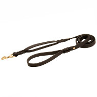 Braided Leather Dog Leash with Additional Handle