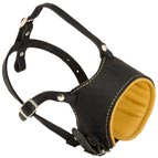 Royal Soft Nappa Leather Anti-Barking Dog Muzzle