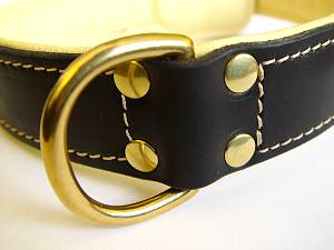 dog collar padded