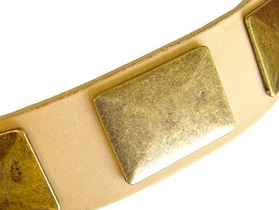 dog collar leather dog collar with massive brass plates