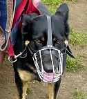 Lightweight Wire Cage Dog Muzzle for Free Breathing