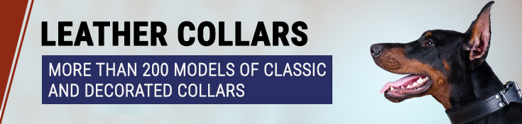 Leather Collars - More Than 200 Models of Classic and Decorated Collars