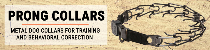 Prong Collars - Metal Dog Collars for Training and Behaviour Correction