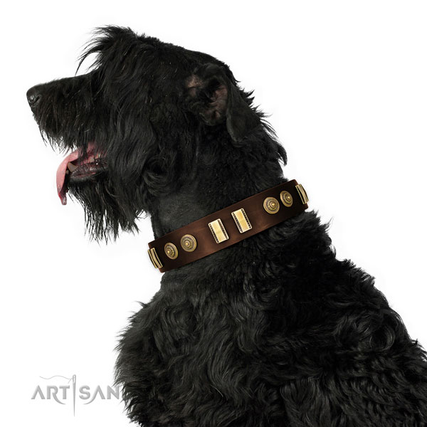 Black Russian Terrier daily walking dog collar of comfortable leather