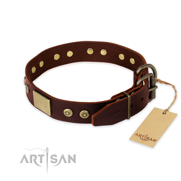 Brown leather dog collar for reliable daily use