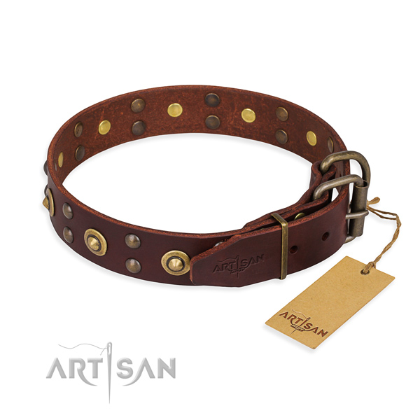 Brown leather dog collar with riveted fittings