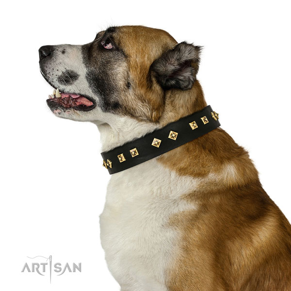 Central Asian Shepherd handy use dog collar of fine quality leather