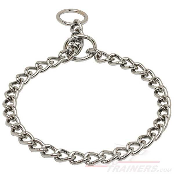Choke Chain for Dog Behavior Correction