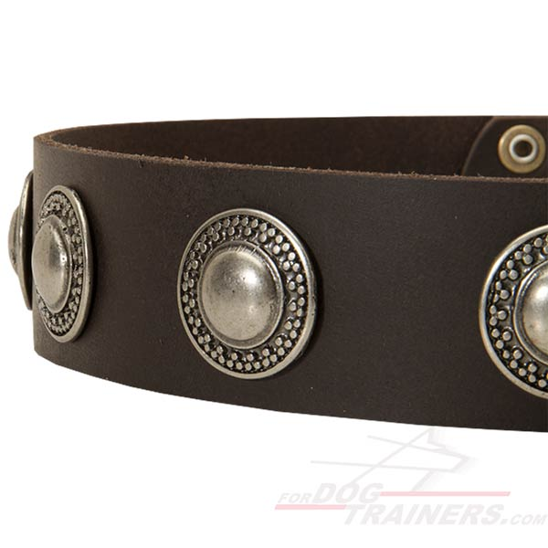 Stylish Leather Dog Collar with Smooth Edges