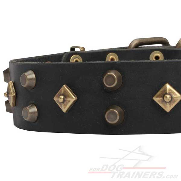 Black Decorated Leather Dog Collar with Rust-proof fittings