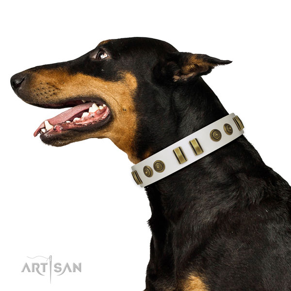 Doberman handy use dog collar of awesome quality natural leather