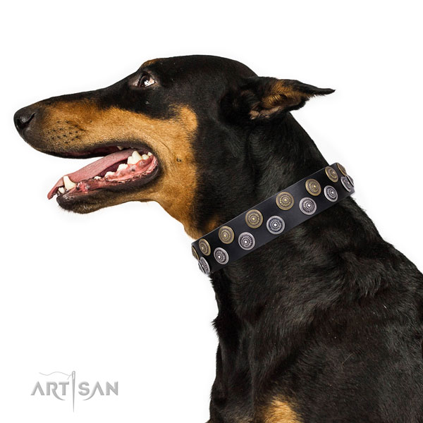 Doberman exceptional leather dog collar with decorations