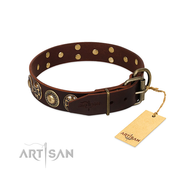Uniquely Designed Dog Collar Equipped with Rustproof Hardware