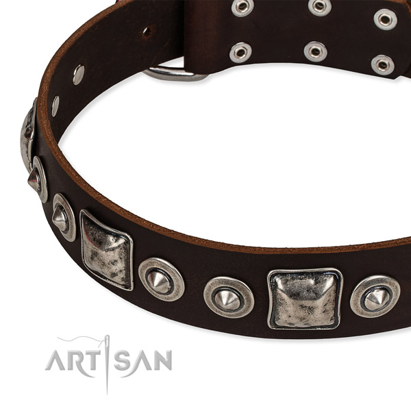 Trendy Dog Collar Made of Leather