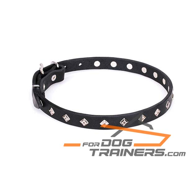 Trendy Dog Collar with Silver-Like Square Studs
