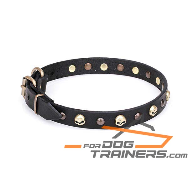 Leather Dog Collar with Brass Plated Studs and Skulls