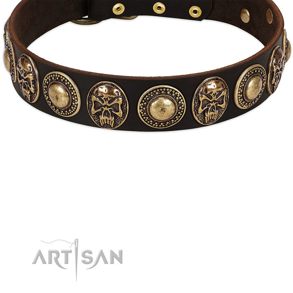 Trendy Leather Dog Collar with Riveted Decor