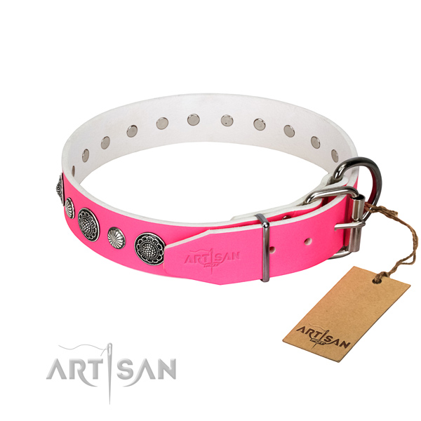 Stylish Dog Collar Adorned with Studs