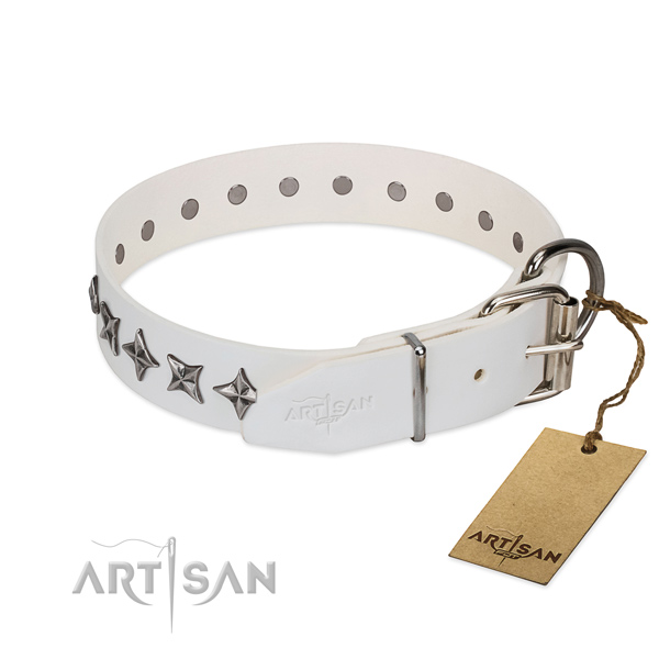 Stylish Dog Collar Adorned with Stars