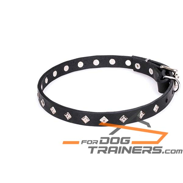 Decorated Leather Dog Collar with Chrome Plated Decor
