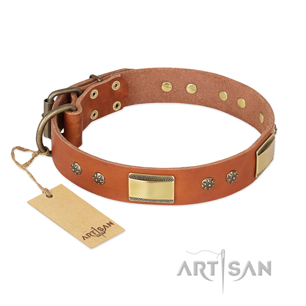 Tan Dog Collar with Bronze Plated Fittings