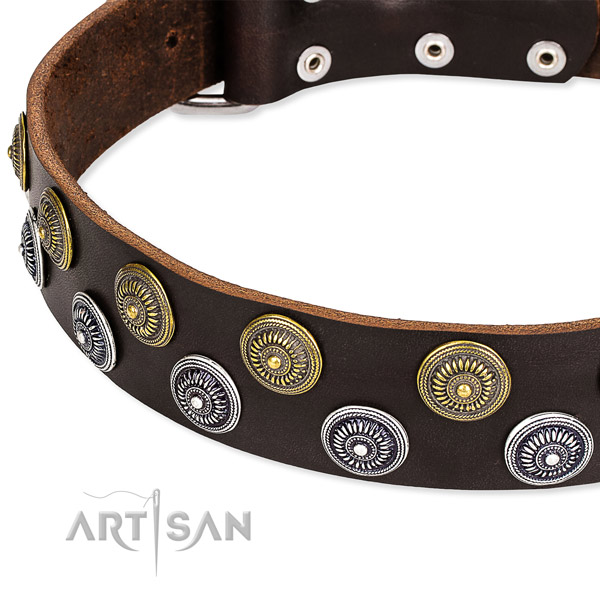 Brown Leather Dog Collar with Round Decorations