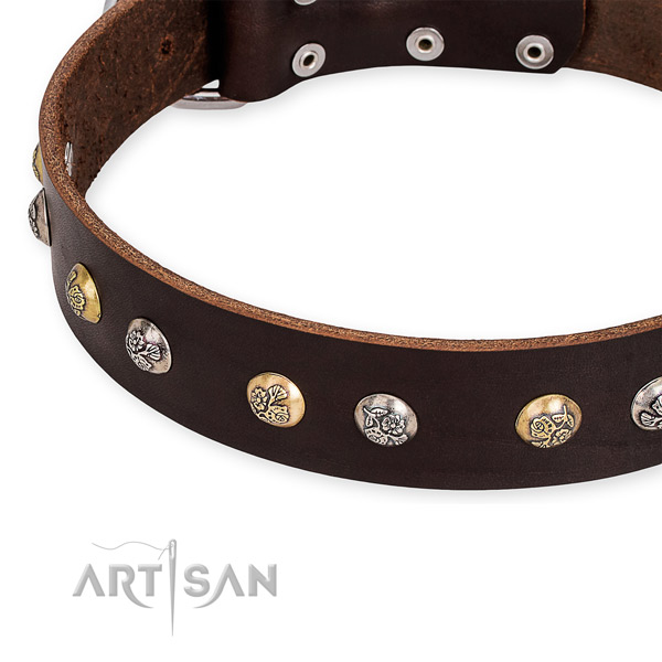 Brown Leather Dog Collar with Studs with Flower Engraving