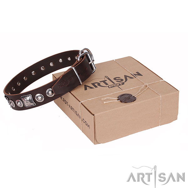 Trendy Brown Dog Collar Made by Artisan