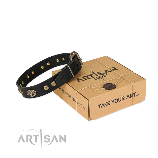 Stylish Black Leather Dog Collar with Plates and Studs