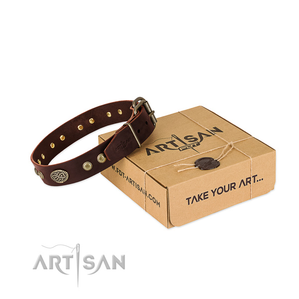 Brown Leather Dog Collar with Plates and Studs