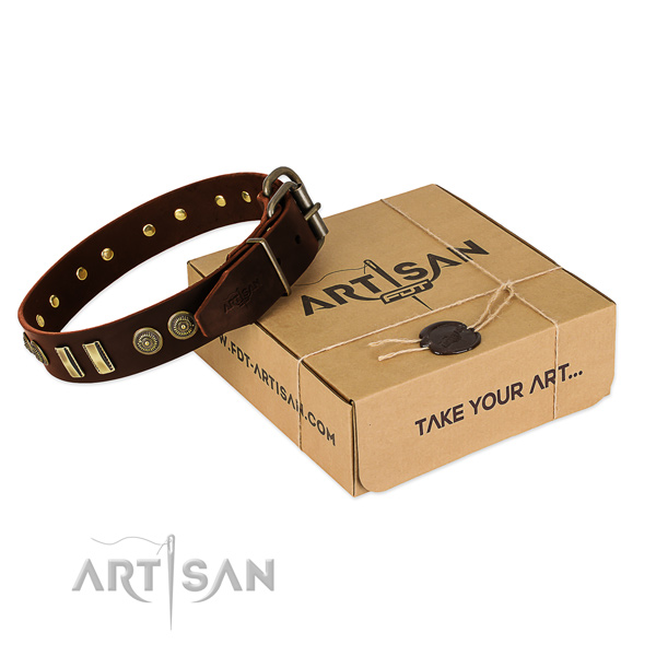 Brown leather dog collar with decorations
