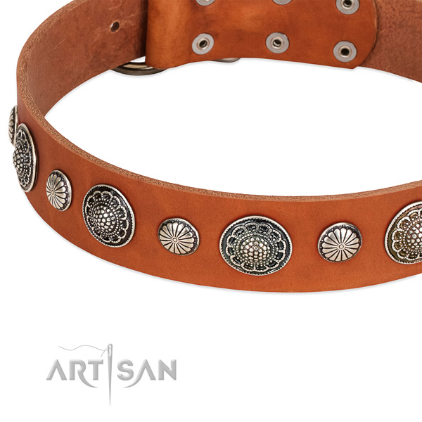 Silver-like adornments on FDT Artisan leather dog collar
