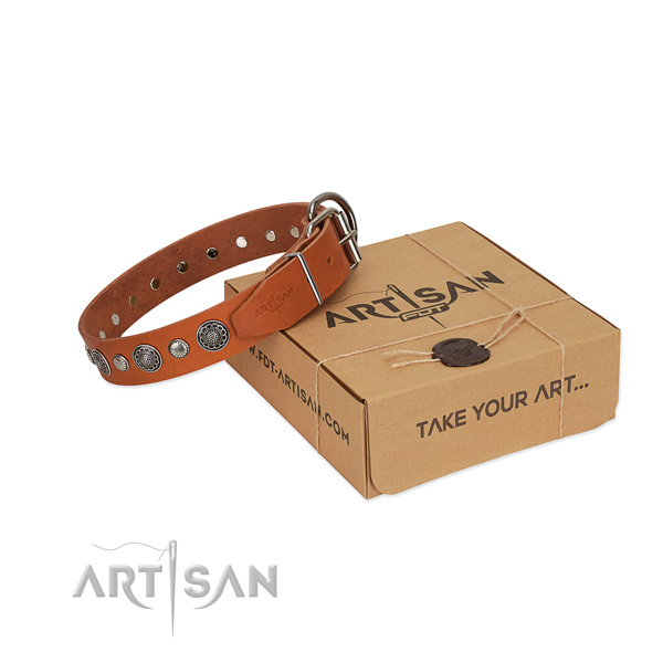 Tan leather FDT Artisan dog collar for daily walking